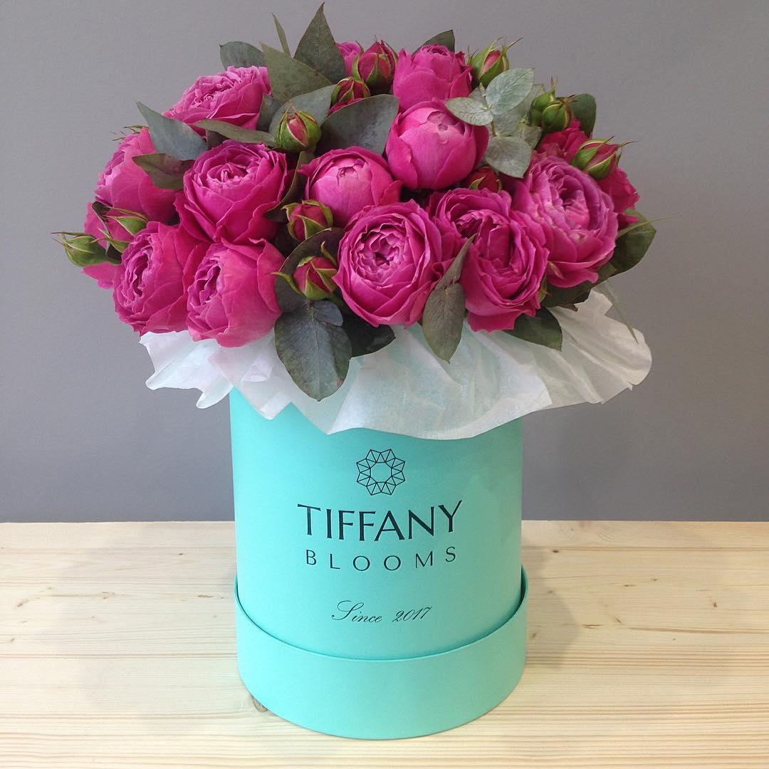 Чудесный и стильный подарок — коробочка с пионовидными розами от tiffanyblooms #цветывкоробке #tiffanyblooms #букет_от_тиффани #цветыкрд #доставкацветовкраснодар #букеткраснодар #цветыкраснодар ▪️Рады вам с 8:00 до 21:00 ▪️Заказы +79000001133 ▪️Рашпилевская 28 ▪️Сайт tiffanyblooms.ru