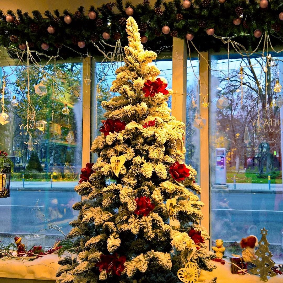 Пока зима ⛄ к нам ещё не пришла, мы создаем новогоднее настроение сами. . Работаем с 8:00 до 20:00 Заказы +79000001133 Рашпилевская 28 tiffanyblooms.ru . #букеткраснодар #букет_от_тиффани #tiffanyblooms #flowers #цветыкрд #доставкацветовкраснодар #доставкабукетовкраснодар #букетвшляпнойкоробке
