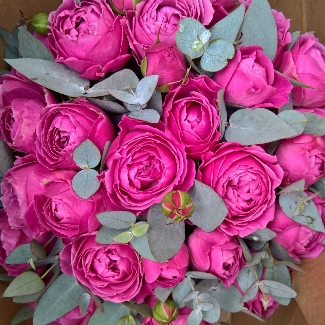 Это реальный букет сегодняшний! Настоящий взрыв цвета у пионовидных роз Misty Bubbles. . Звоните +79000001133 Рашпилевская 28 Работаем с 8:00 до 20:00 tiffanyblooms.ru . #букеткраснодар #букет_от_тиффани #tiffanyblooms #flowers #цветыкрд #доставкацветовкраснодар #доставкабукетовкраснодар #букетвшляпнойкоробке